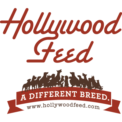 hollywood_feed_logo